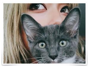 ローラ テレビ出ない理由 ロス 移住犬 猫 保護活動