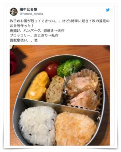 田中みな実 姉 東大 楽天 結婚
