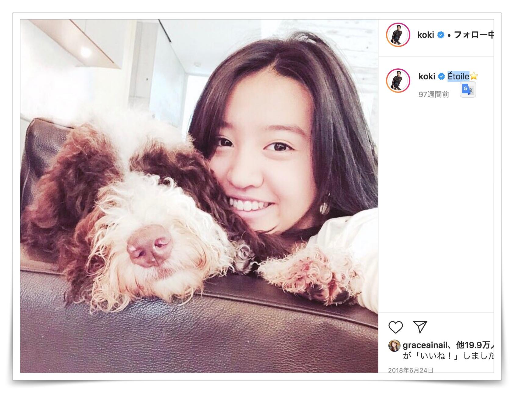 kokiと犬の画像