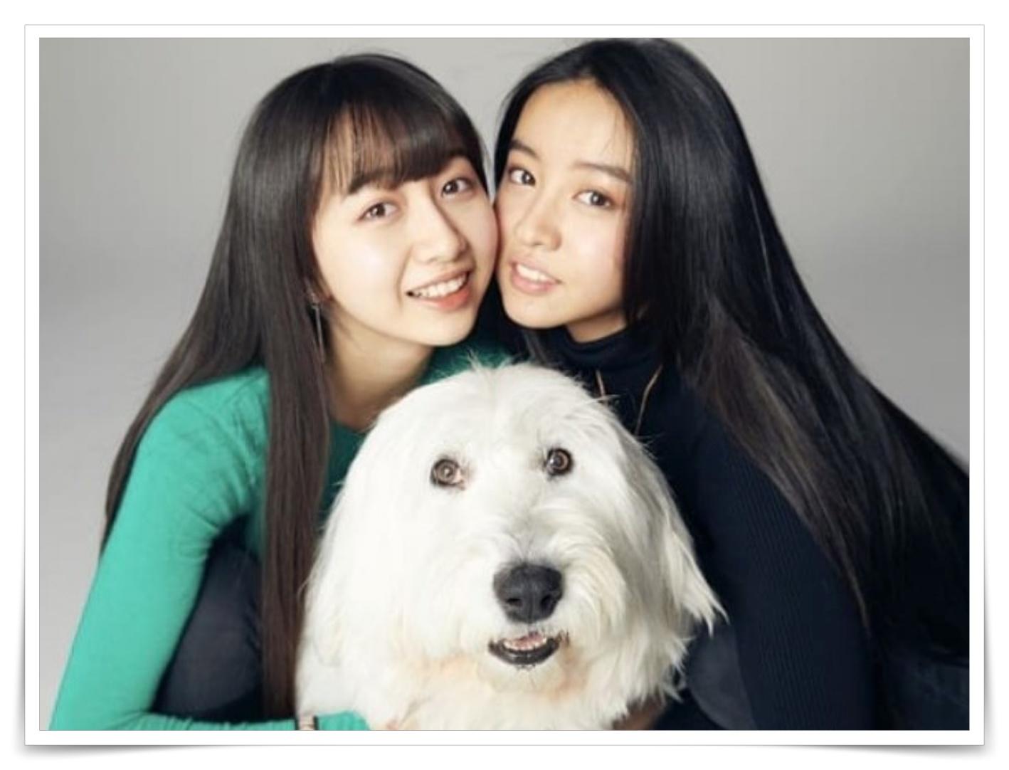 cocomiとkokiと犬の画像