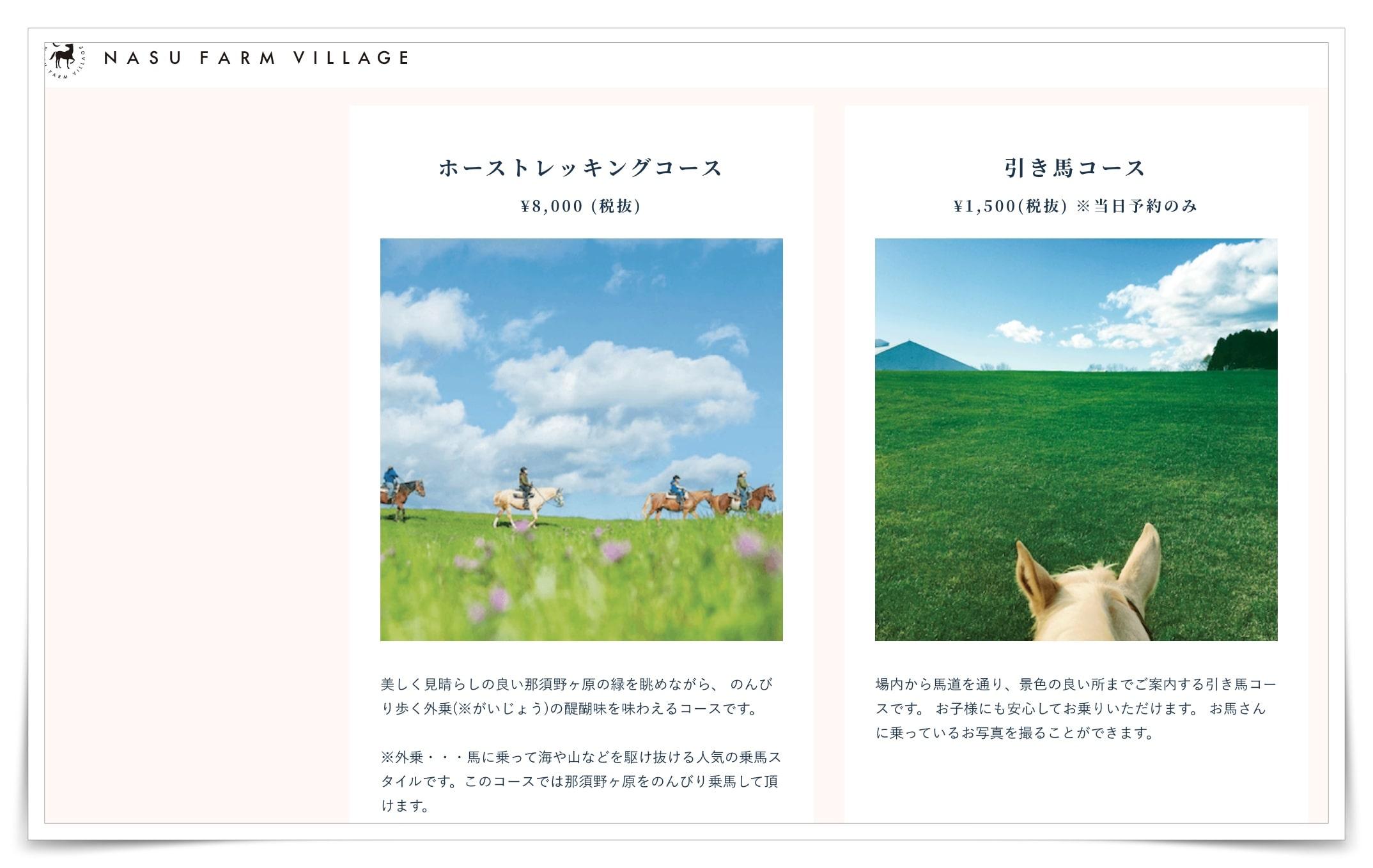 紗栄子の牧場の画像