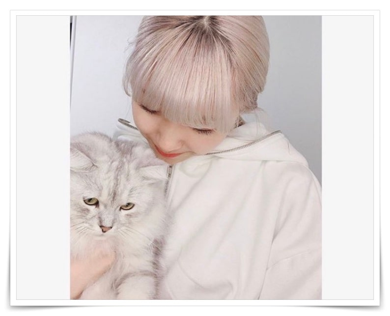 niziuマユカと猫